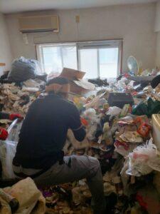 ゴミの撤去を行っております。